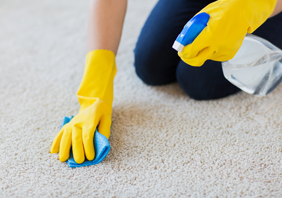 ניקוי שטיחים בבית ברמלה